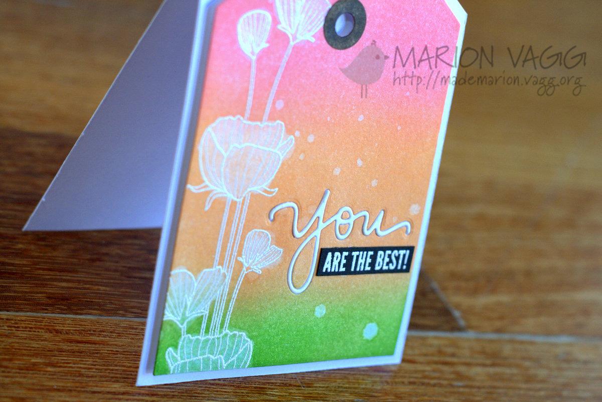 You amaze me detail | Marion Vagg