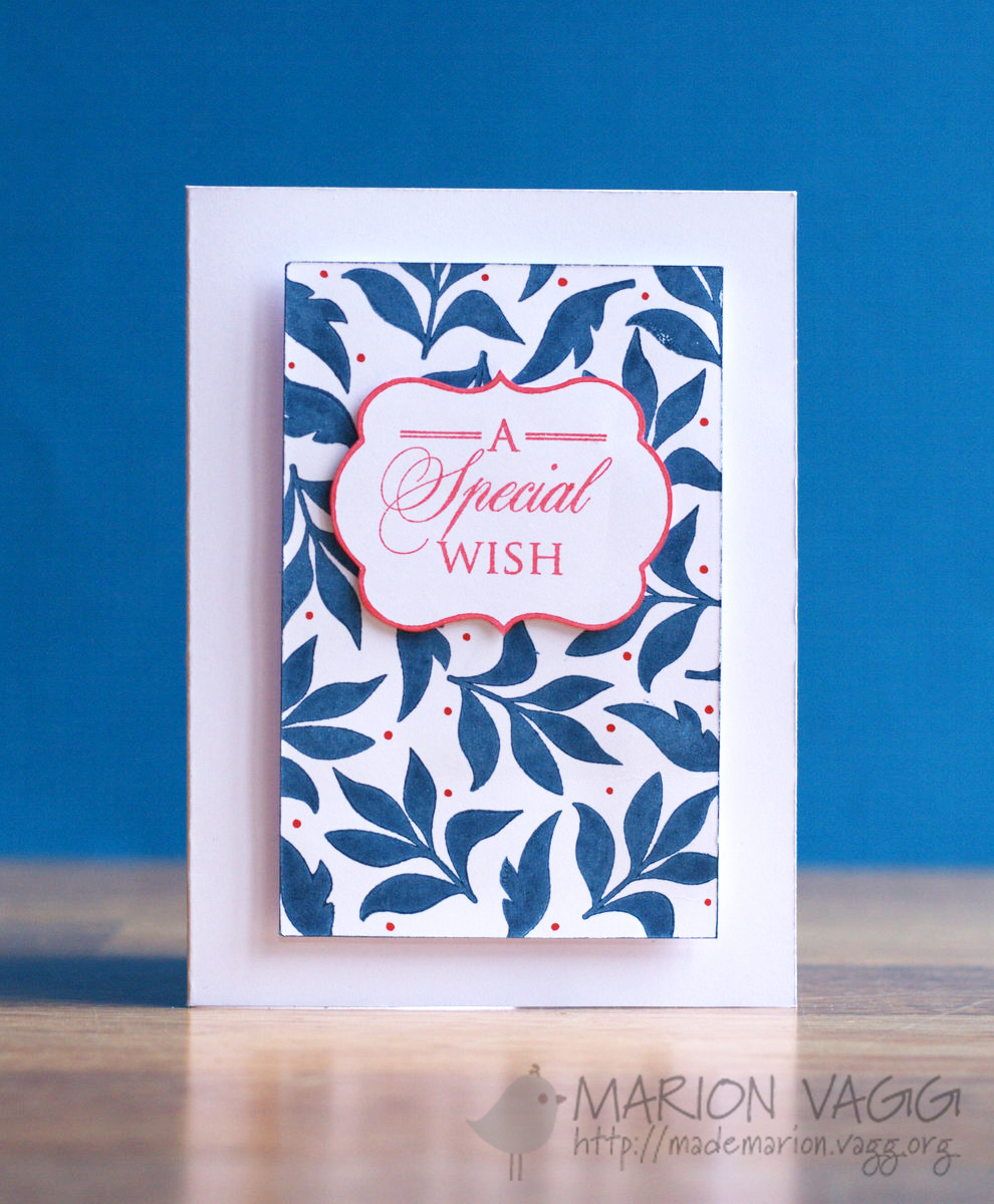 A Special Wish PB | Marion Vagg