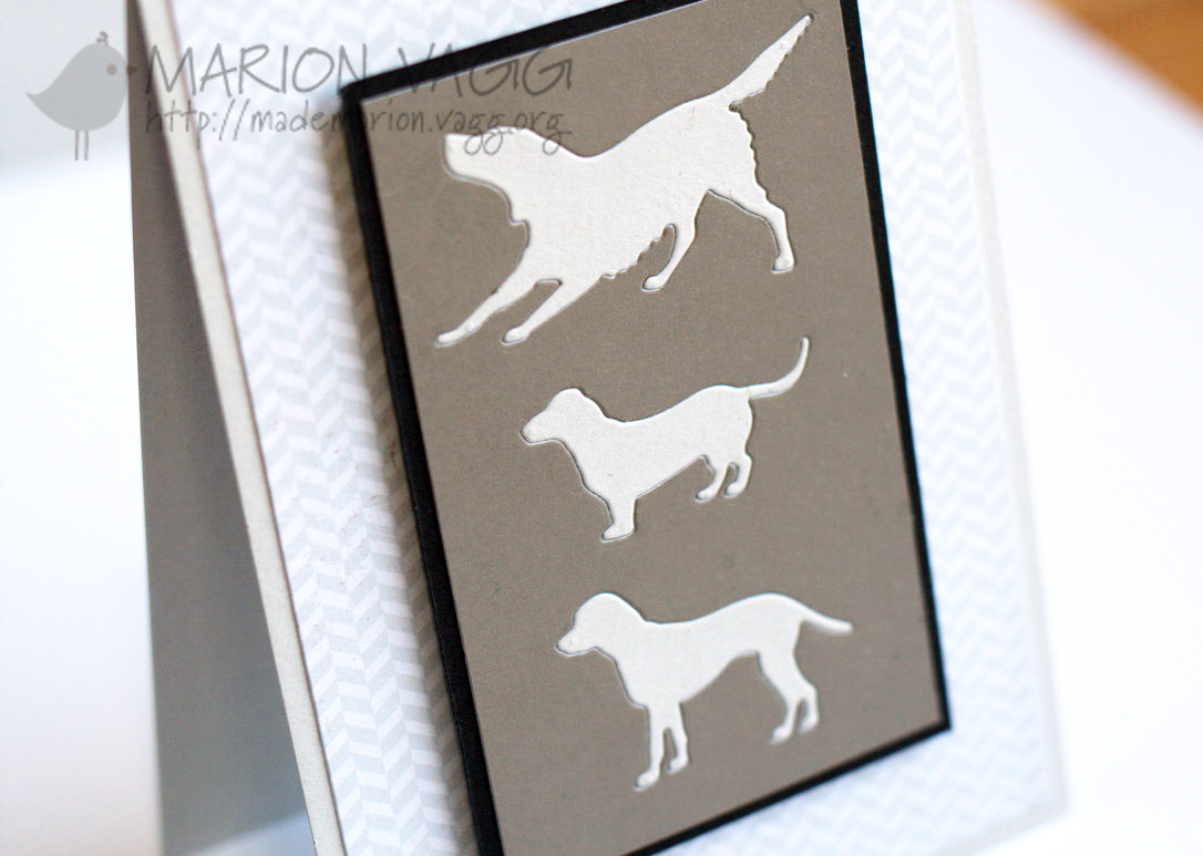 Canine Trio detail | Marion Vagg