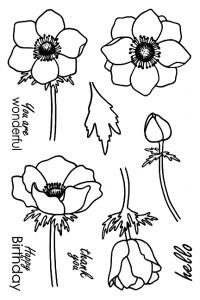 Jane's Doodles Anemone