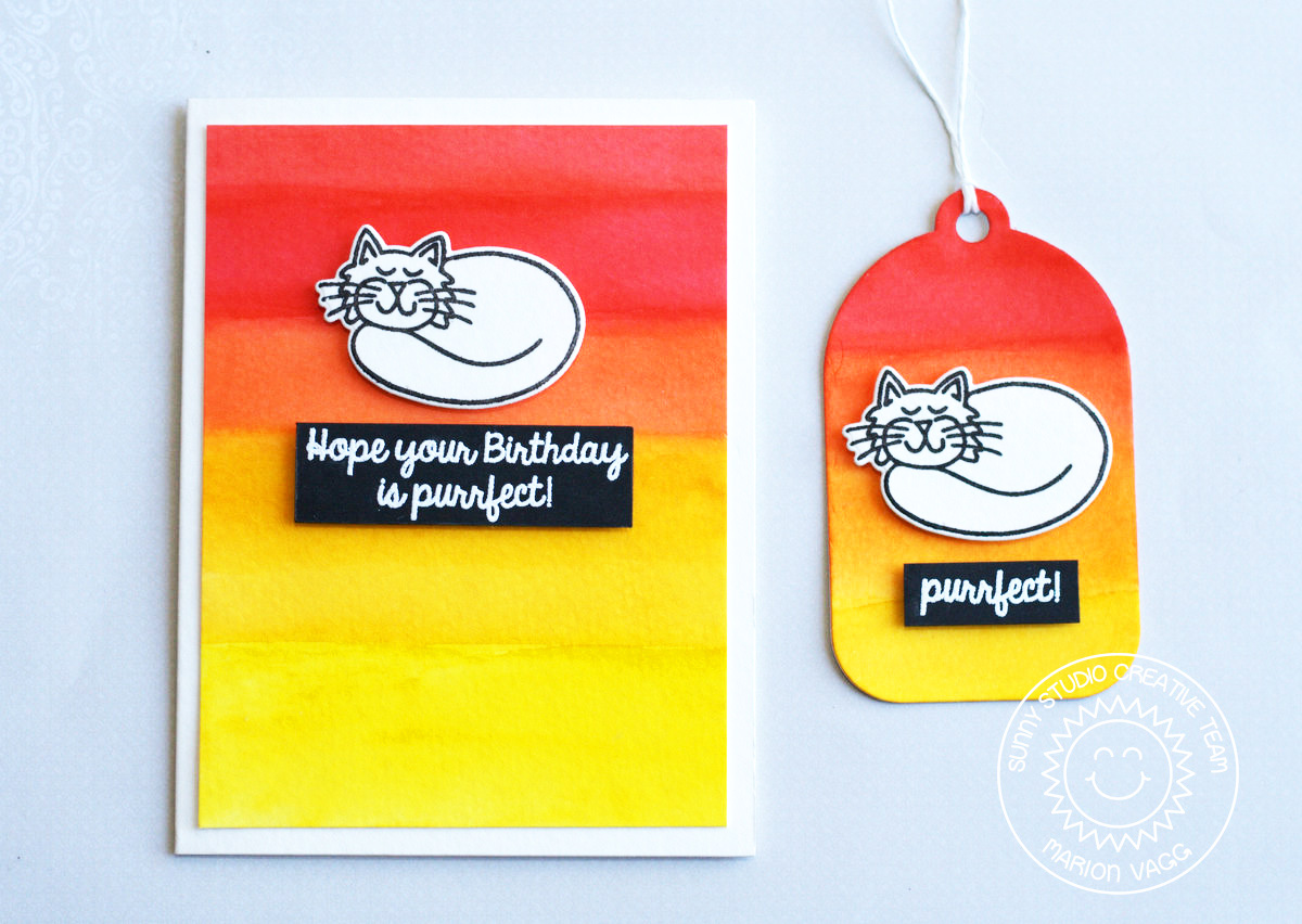 SS Purrfect Birthday | Marion Vagg