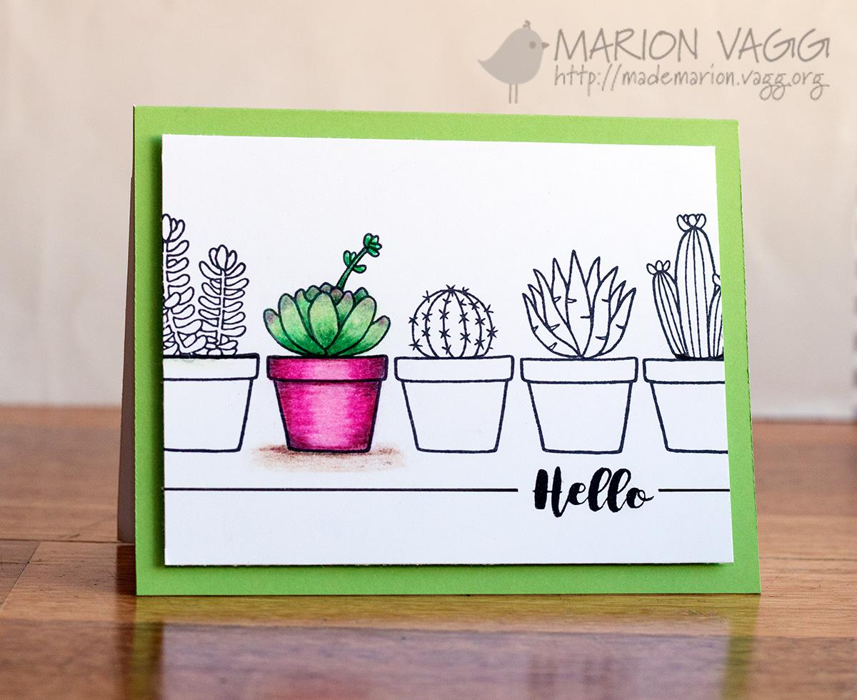 JD Cactus | Marion Vagg